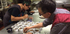 Mexican-American Researchers Reclaim Heritage to Radically Change the Way We Eat