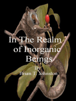 In The Realm of Inorganic Beings