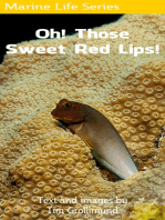 Oh! Those Sweet Red Lips!