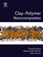 Clay-Polymer Nanocomposites