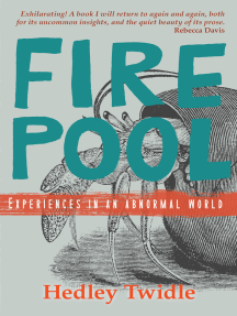 Firepool: Experiences in an Abnormal World