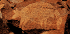 Animal Images In Prehistoric Rock Art