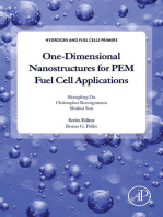 One-dimensional Nanostructures for PEM Fuel Cell Applications