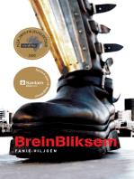BreinBliksem