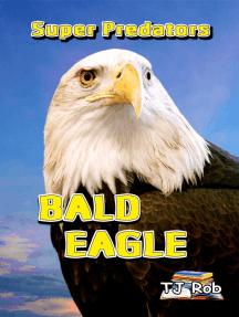 Bald Eagle: Super Predators