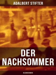 Der Nachsommer: Bildungsroman