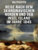 Reise nach dem skandinavischen Norden und der Insel Island im Jahre 1845