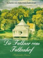 Die Falkner vom Falkenhof (Historischer Roman)