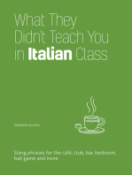What They Didn't Teach You in Italian Class: Slang Phrases for the Cafe, Club, Bar, Bedroom, Ball Game and More