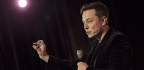 How Elon Musk Plans to Turn Humans Into Robots