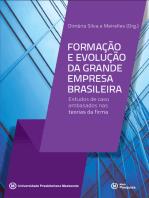 Formação e evolução da grande empresa brasileira