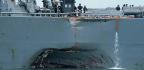 Trouble Again at Sea