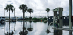 Historic Communities Face New Challenges as Sea Levels Rise along the South Carolina Coast