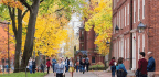 Celebrating Intellectual Engagement On College Campuses