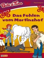 Bibi & Tina - Das Fohlen vom Martinshof