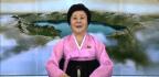 North Korea's 'Pink Lady'