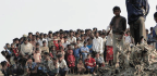 As Myanmar Violence Spikes, Why Is India Threatening to Deport 40,000 Rohingya Muslims?