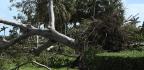 In Florida, Floods Hit Jacksonville as Irma Moves Into Georgia