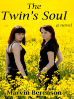 The Twin's Soul