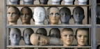 Huge DNA Databases Reveal the Recent Evolution of Humans