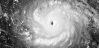 Why Did Hurricane Irma Leave so Many People in the Dark?