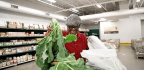 One Of America's Biggest Food Banks Just Cut Junk Food By 84 Percent In A Year