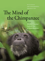 The Mind of the Chimpanzee