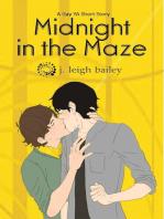 Midnight in the Maze