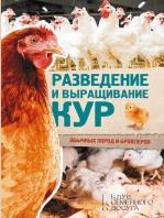 Разведение и выращивание кур обычных пород и бройлеров (Razvedenie i vyrashhivanie kur obychnyh porod i brojlerov)