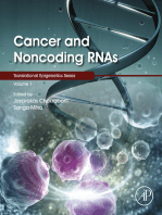 Cancer and Noncoding RNAs