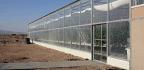 Facing an Even Hotter, Drier Climate, Jordan Testing Desert Agriculture