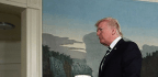 Trump—and Tocqueville?