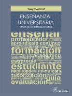 Enseñanza universitaria: Una guía introductoria