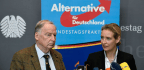 The 'Very Different' Leaders Of Germany's Far-Right AfD Party