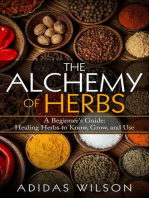 The Alchemy of Herbs - A Beginner's Guide