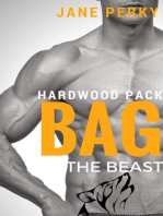 Bag the Beast, A Gay Romance