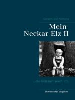 Mein Neckar-Elz II