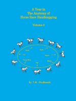 A Year In the Anatomy of Horse Race Handicapping: Volume 3