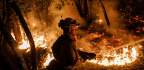 Firefighters Lacked Water-Dropping Aircraft in First Hours of Wildfires in Wine Country