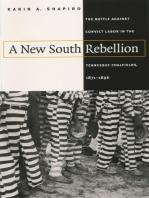 A New South Rebellion