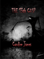 The 13th Cusp