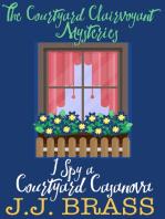 I Spy a Courtyard Casanova