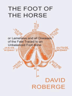 The Foot of the Horse or Lameness and all Diseases of the Feet Traced to an Unbalanced Foot Bone