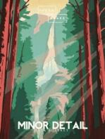 Minor Detail