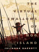 The Virtual Swallows of Hog Island