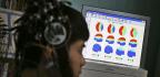 How a Focus on Rich Educated People Skews Brain Studies