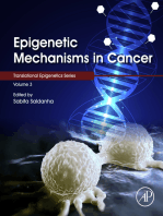 Epigenetic Mechanisms in Cancer