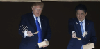 Don't Be Koi. There's Something Fishy About That Trump-Abe Photo