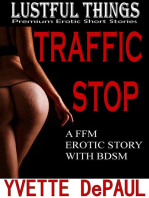 The Traffic Stop