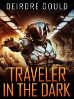 Traveler in the Dark